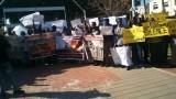 הפגנה בקריאה להתערבות בינלאומית בדרפור, היום. צילום: צדיק דאוויד.