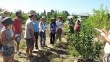 """שיעור במסגרת קורס """"יערות מאכל"""" שנפתח השנה בפקולטה לחקלאות, יער המאכל קדרון (צילום: ארגון """"מגמה ירוקה"""")"""